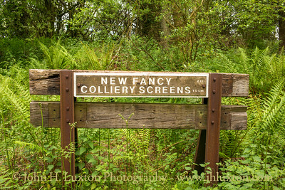 New Fancy Colliery and Branch Line