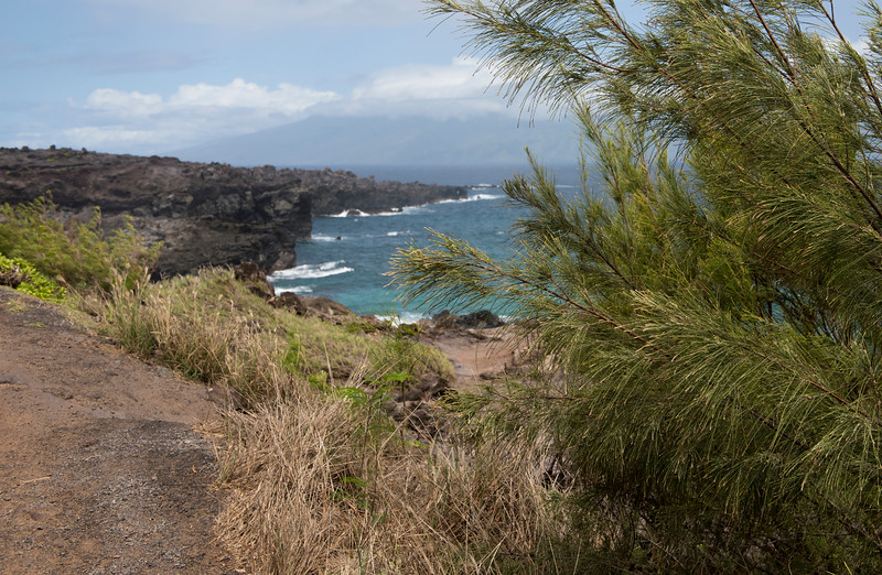 hawaii_0027.jpg