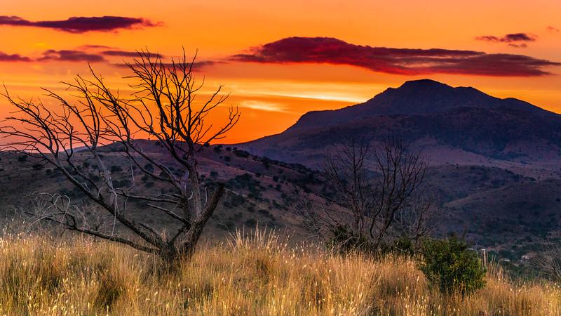 Starlight Trail Sunset.jpg