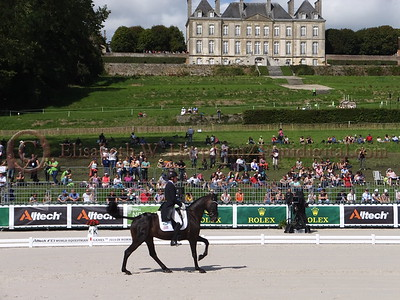 2014 World Equestrian Games - Eventing Championships