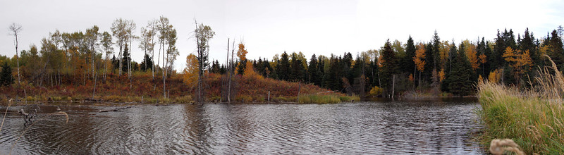 Autumn Colours Panoramas
