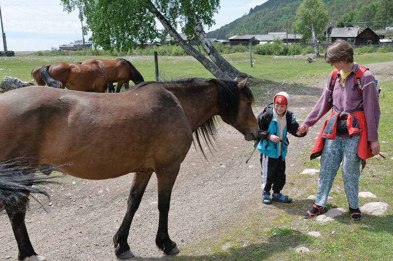 Richard hatte ein wenig Angst vor den Pferden.