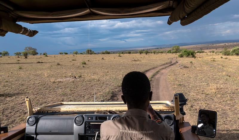 Tanzania-Serengeti-National-Park-Safari-01.jpg