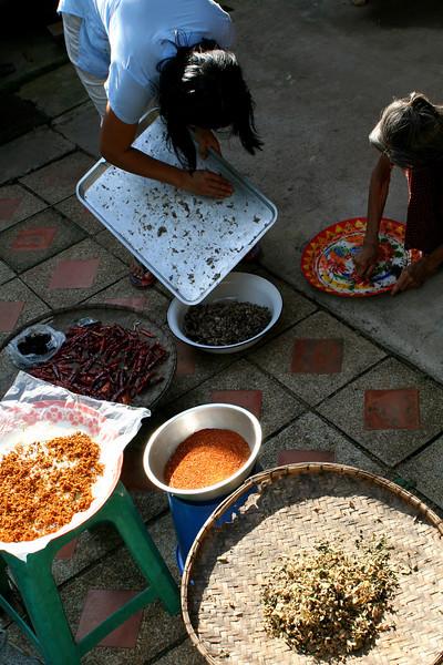 IMG_9868_chiles_gathering_ingredients_6x9x300.jpg