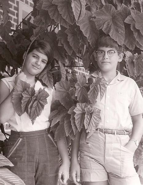 Manos Almeida Santos: Gininha e Mario Jorge
