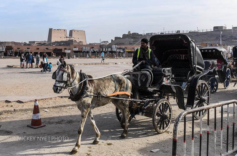 020820 Egypt Day7 Edfu-Cruze Nile-Kom Ombo-5937.jpg