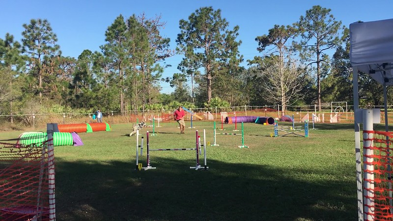 Indy and I at Positive Action Agility competition
