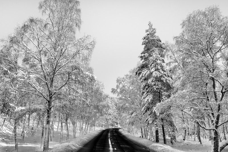 Hugh -Braemar Snow-6959-Edit-Edit.jpg