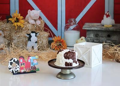 Kason   Farm-tastic FIRST Birthday