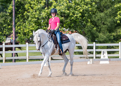 ODS Schooling Show May 2017