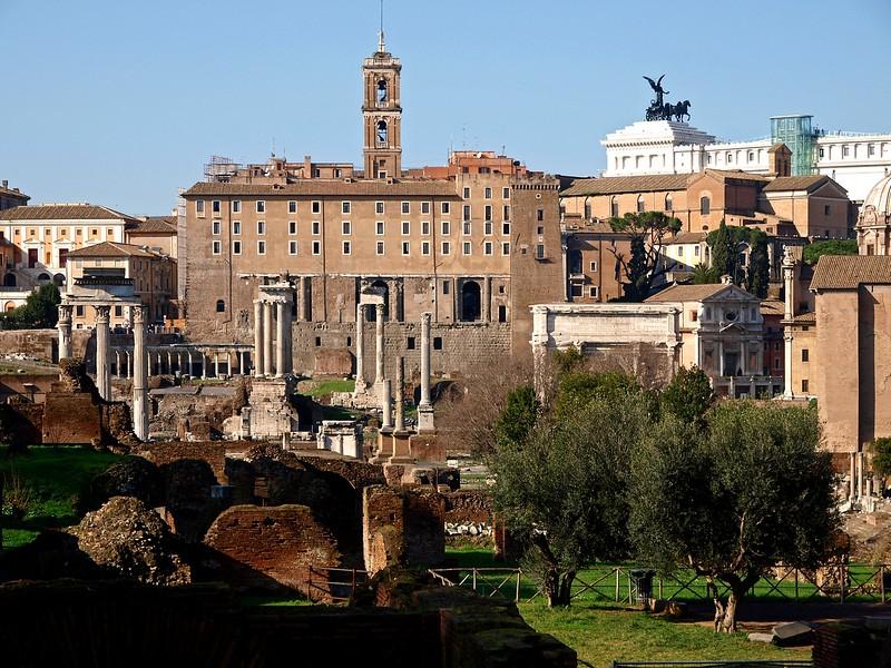 Rome Forum Romanum 30-1-09 (69).jpg