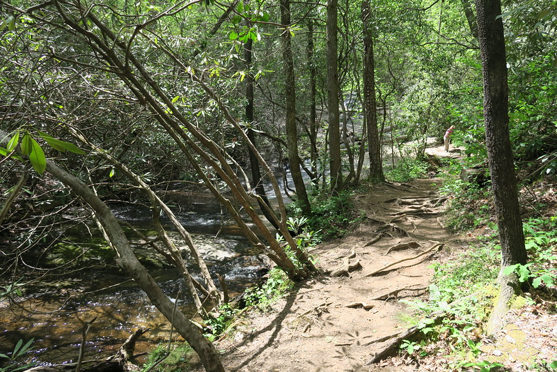 Carrick Creek Trail - 1,420'