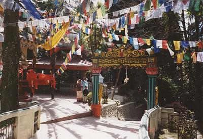 34 Darjeeling