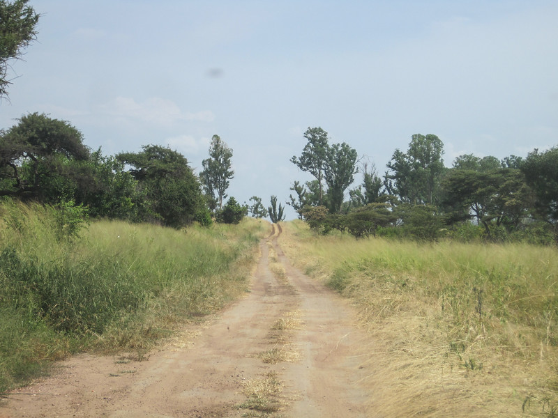Rwanda_17_ixus-9476.jpg