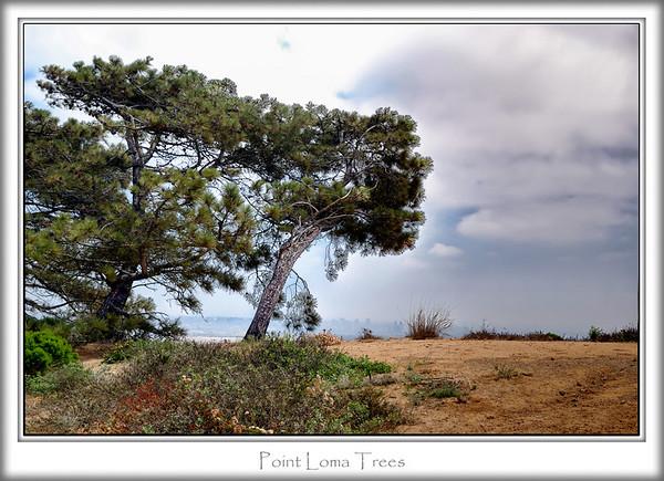 Cabrillo National Monument - Aug '07