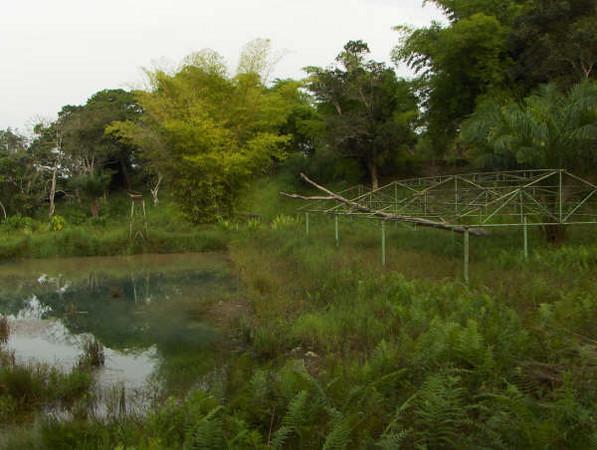 Fotos mais recentes do que era outrora a piscina mais linda da Lunda...uma pena!