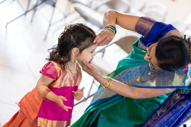 Erin_Harsha_Hindu_Wedding-63.jpg