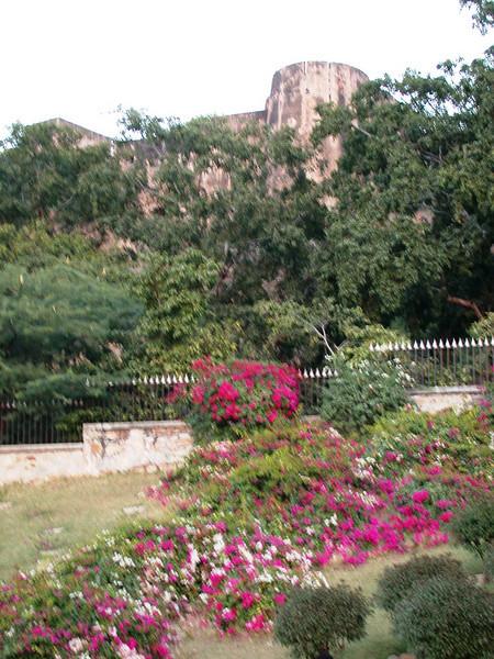Jaipur (3).JPG