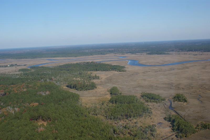 Charleston Helicopter 446.jpg