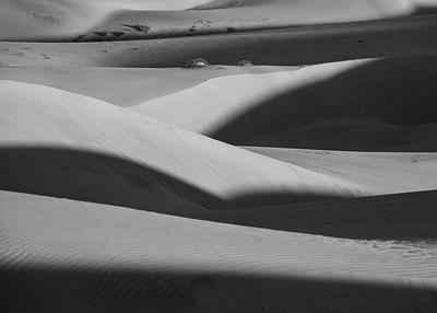 Oceano Dunes (Feb 2016)
