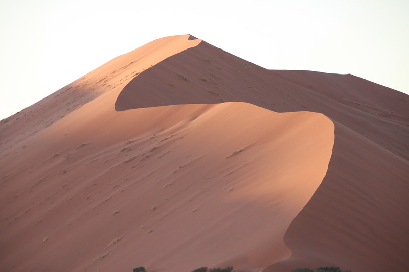 Dune#45 (45km from entrance of Namib Naukluf National Park)