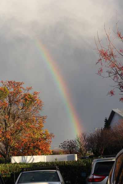 Rainbows and Landscapes
