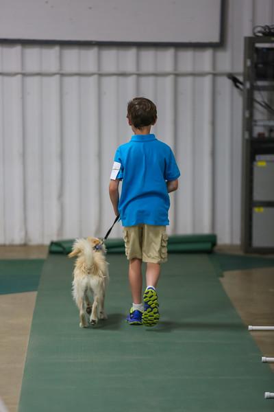 Dog Show-7.jpg