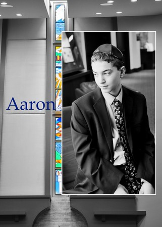 Aaron Family 2019