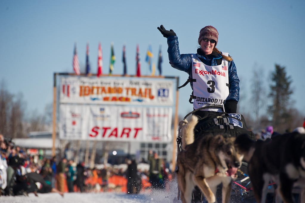 . Musher Paige Drobny, of Fairbanks, waves to the crowd after she leaves the staring line of the Iditarod Trail Sled Dog Race on Willow Lake, Sunday, March 2, 2014, in Willow, Alaska. The race will take mushers nearly a thousand miles to the finish line in Nome, on Alaska\'s western coast. (AP Photo/Anchorage Daily News, Marc Lester)