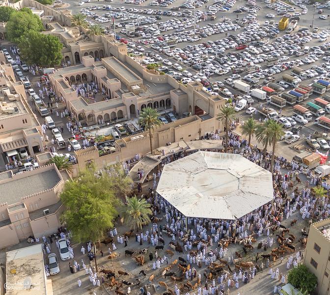 DJI_0028 copy- Oman.jpg