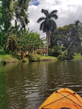 Kayaking on the Anahulu River on the North Shore of Oahu