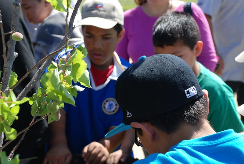EarthDayLatino_FloraPlanting_2011--04-15_28.JPG