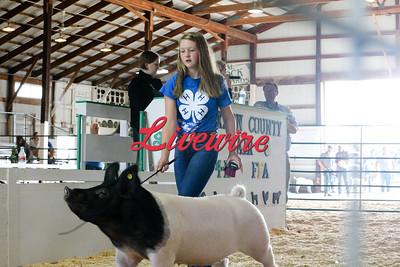2021 Jackson County Fair - Saturday