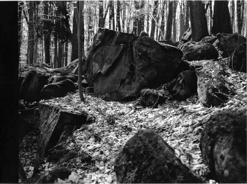 Odenwald015.jpg