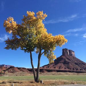 Moab 2014