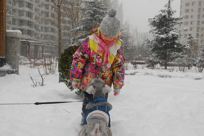 [20100103] 1st 2010 Snow in Beijing (77).JPG