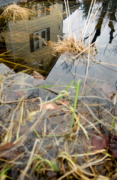 Finding Home Series