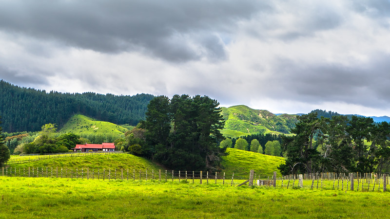 New Zealand_016.jpg