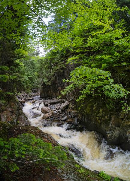 Cascade Stream Gorge, Rangeley, Maine (63352)