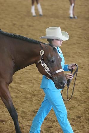 LQHA Amite 06/17/2006 Western Pleasure & Horsemanship