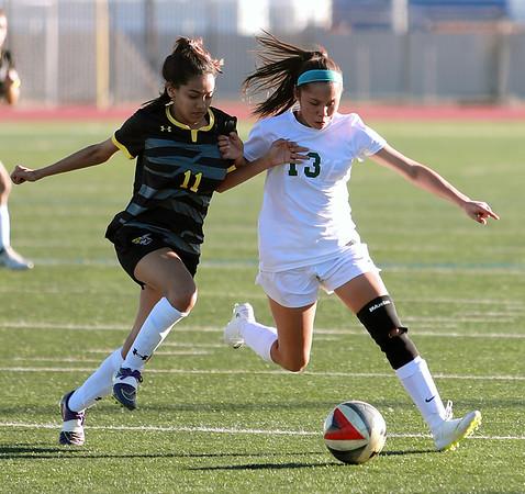 Naaman Forest Girls Soccer