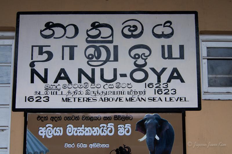 Sri-Lanka-Haputale-5920.jpg