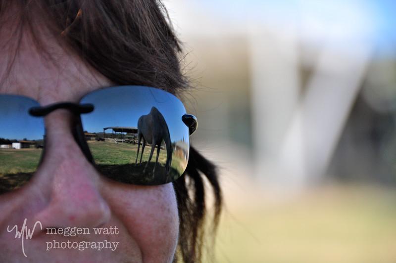 EB&Horses-021.jpg