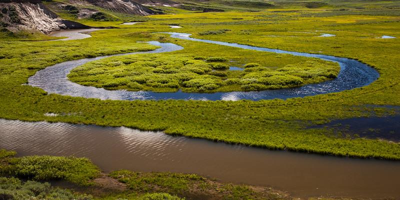 Stream in the Hayden Valley