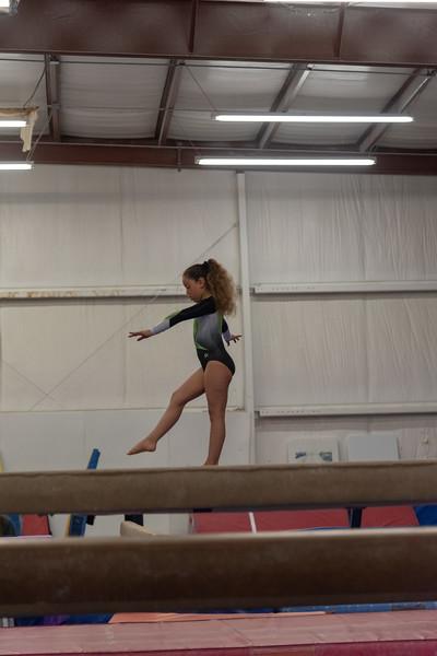 Brianna Gymnastics-0272.jpg