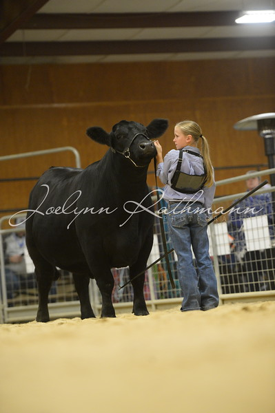 2019 Tusa Show Cattle Fall Retreat