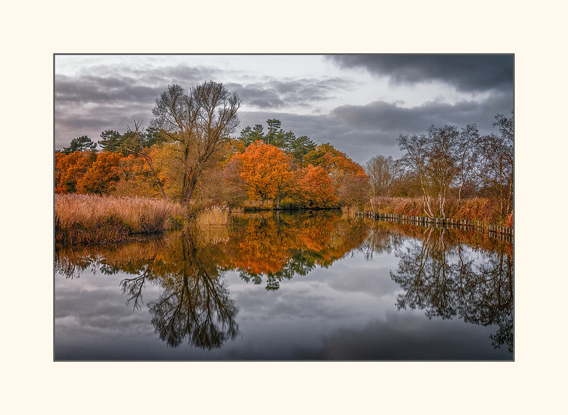 last throws of autumn - norfolk broads landscape.jpg