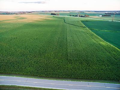 Hernke Fields