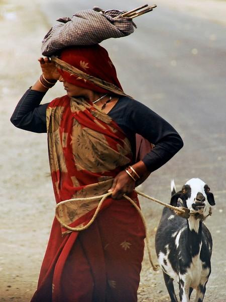 2008-India.jpg