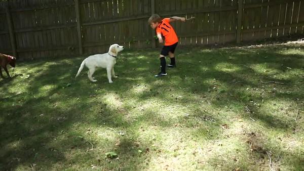 Tucker Training Video